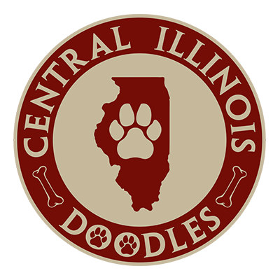 Contact Central Illinois Doodles